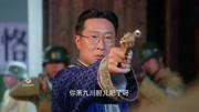 左輪手槍玩賭命游戲,裝三顆子彈的見過嗎,嚇到腿軟!