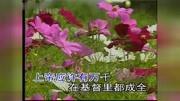 """""""上帝是一个女孩"""",经典英文MV"""
