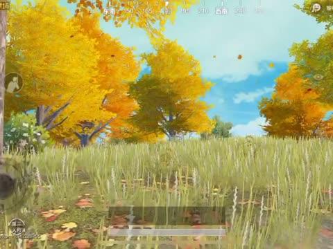 枫叶油画风景图片简单