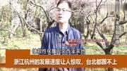 臺灣知名作家林清玄去世,終年65歲。重溫林清玄十大治愈系語錄。致敬。