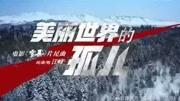 张震、廖凡、李光洁、倪妮!神仙阵容《雪暴》狙击《复联4》