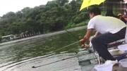 并繼竿搏大魚
