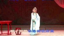 淮剧 白娘与许仙 但愿得平安无事过端阳片段