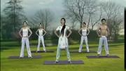 瑜伽初级教程-美体瑜伽 王媛