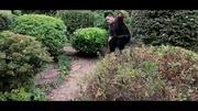 超級馬里奧玩植物大戰僵尸