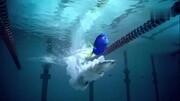 海底总动员2:多莉的回家之路