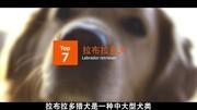 勵志微電影《不再》完整版微電影排行榜前十名ka