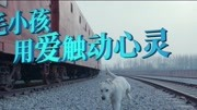 《小狗奶瓶》曝街采特辑:我就想养只狗怎么了