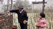 未來在農村,這幾類人將越過越窮,看看里面有你嗎?