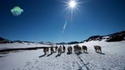 格陵兰岛第二集 探险倒计时(上)