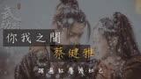 《武動乾坤之英雄出少年》主題曲MV:《你我之間》 蔡健雅