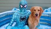 小伙被注射不明液體,變身鋼力士,力大無窮激戰蜘蛛俠!