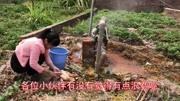 """0120""""中国第一氡泉""""汝城热水温泉"""