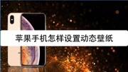 衡阳市旗袍春晚:模特舞蹈秀——《月下杜鹃》