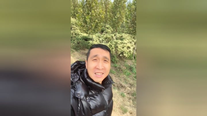 韩兆男孩资料大全-韩兆电影_韩兆电视剧明星-爱奇艺老动态电视剧6090图片