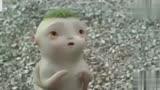 捉妖記:胡巴乖乖撿起棗子吃想要抱抱卻發現只剩自己一個了