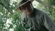 《怒晴湘西》潘粤明演的陈玉楼就是个坑,剧里死的人都跟他有关