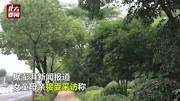 章子欣,你在哪兒?兩名租客在寧波東錢湖自殺 未帶孩子身上僅25元