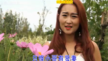 云南山歌 十二生肖恋妹花 张杰 李如燕演唱