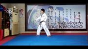 太極八章教學視頻(中文動作講解)