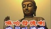 梦幻与真实:佛教文化基本精神解读