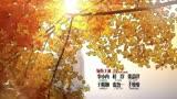 《老婆大人是80后》片頭MV:李小冉變女王 杜淳團團轉