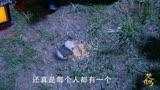 《楚喬傳》兩只可愛的小老鼠 么么噠!趙麗穎嗑瓜子的畫面也可愛