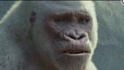 巨石强森最新力作《狂暴:世纪浩劫》中文版剧场预告片