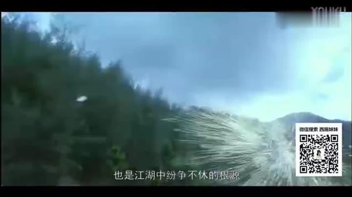 新仙鹤神针
