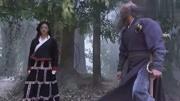 《天龙八部 》木婉清视段誉为夫。鳄神正欲收段誉为徒