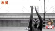 NBA提升士氣的五大球員:追夢格林入榜,第一無爭議