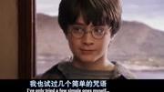 哈利·波特7:哈利·波特與死亡圣器(EA游戲)