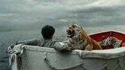 5分鐘看完電影《少年派的奇幻漂流》,小伙和老虎的漂流故事!1