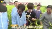 大哥您要給大同成龍黃花菜代言?成龍:反正農產品我都代言!