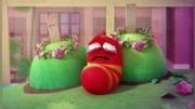 蟑螂不是打不死的!_|五个操控改变宿主的僵尸寄生虫