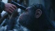 《猩球崛起3》27日16點獨播上線