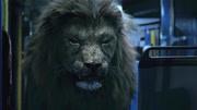 狂暴凶狮,下集,大狮子开始肆无忌惮进入城市,人类派出超级士兵