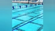 全國游泳冠軍賽 男子400米混合泳汪順奪冠!