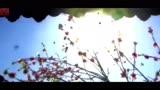 宮3《宮鎖連城》《步步驚情》世紀大戰·mp4[高清版]