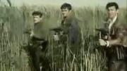 桥前南斯拉夫电影爱上同事姐姐的电影额国语图片