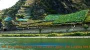 德國-萊茵河畔綠色之城-曼海姆 高清