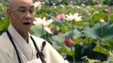 2015大電影《道士下山》林志玲范偉  鏡頭泛濫  王寶強偷看
