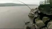 英国渔民捕获巨型食人鱼