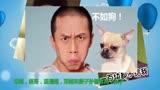 嗶嗶娛樂秀1期 韓寒來了 提前揭秘 爸爸去哪兒4 神秘陣容