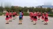 內丘縣官莊鎮官一村大型給力歌舞 ( 10 )