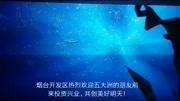 煙臺開發區金沙灘下餃子(續)