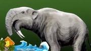 太稀奇!居然有連心臟都能直接看見的動物?六種透明的神奇生物!