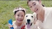 《小狗奶瓶》特辑 爱与陪伴是永恒的家庭主题