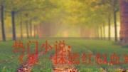 《心底的山盟海誓》全文阅读置顶,排行榜第一txt百度云下载