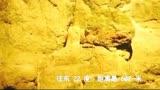 《红海行动》狙击手对决片段,精彩!